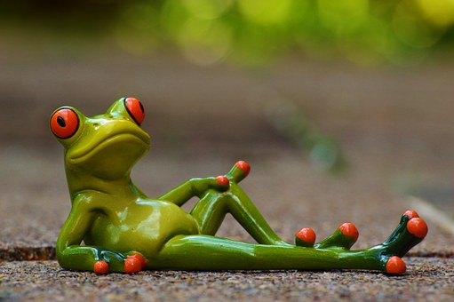 frog-947770__340
