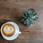 コーヒー生豆のハンドピックと自家焙煎に挑戦してみた